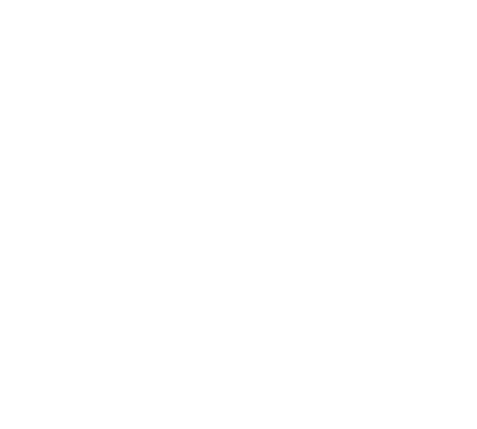 BFR 03-Diamond-Club-Logobanner copy